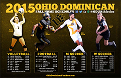2015 Ohio Dominican University Fall Sports Poster